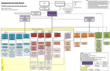 CIUSSS Org Chart